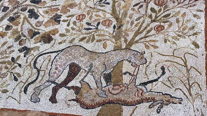 bitola mozaik